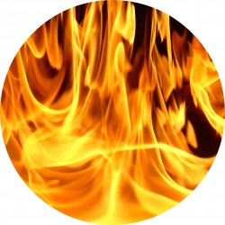 PICTURE DISC flamme