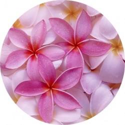 PICTURE DISC fleur