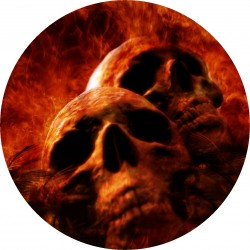 PICTURE DISC skull 2