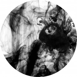 PICTURE DISC smoke 2