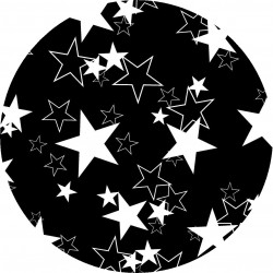 PICTURE DISC étoiles NB