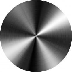 PICTURE DISC titanium gris