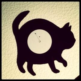 Chat noir 1.5mm