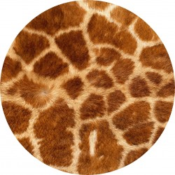 PICTURE DISC animal 1
