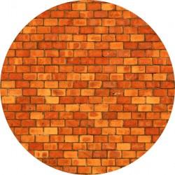 PICTURE DISC brique